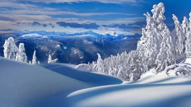 冬雪雪景壁纸大全