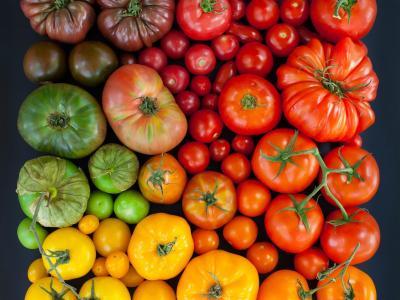西红柿,多彩色的壁纸
