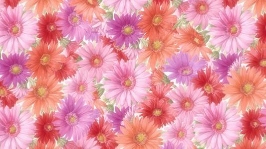 红色Pink Orange Flowers壁纸
