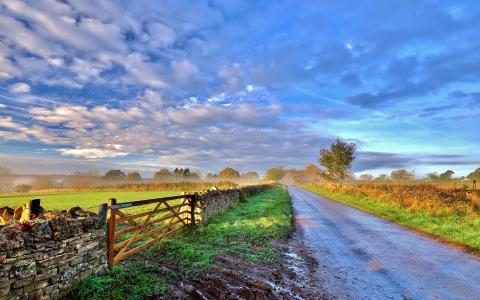 天空,云,早上,路,篱笆,树,草壁纸