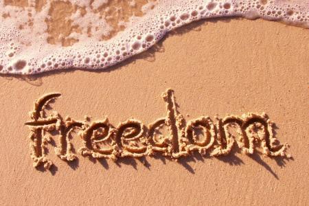 在S壁纸上的自由