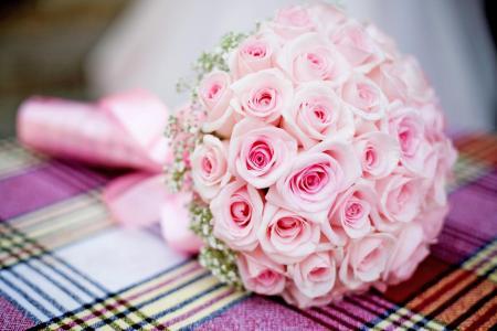 ***迷人的玫瑰花束壁纸