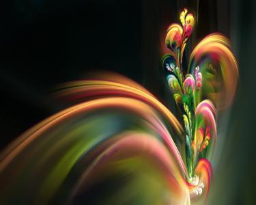 开花喷泉五颜六色的花喷泉分形高清壁纸