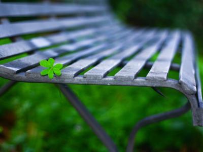 绿色的叶子,板凳,背景虚化、微距摄影壁纸