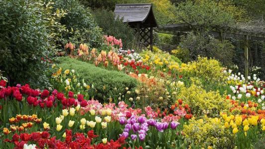 英国花园壁纸