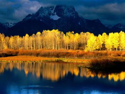 树风景山湖高清壁纸