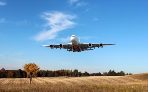 空客A380,阿联酋航空公司,乘客飞机,字段的壁纸