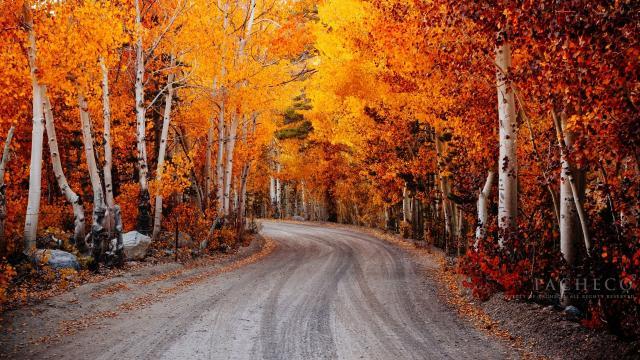 秋季秋天优美风景壁纸