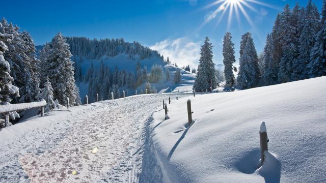 大雪后的山间道路图片