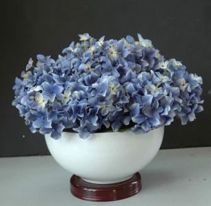 蓝色绣球花壁纸