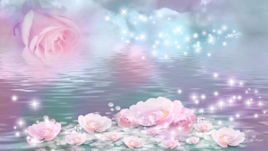 玫瑰浮壁纸