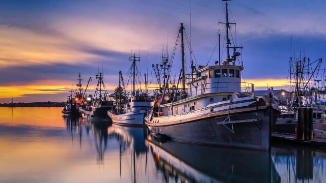 美国旧金山渔人码头风景壁纸