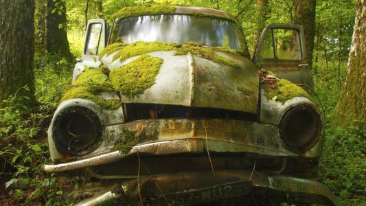 旧车被遗忘在树林里的壁纸