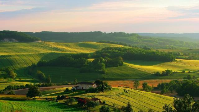 高清绿色护眼自然风景壁纸