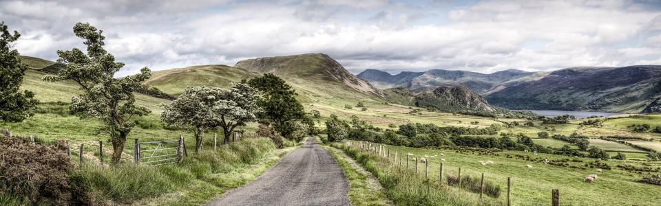 Road, trees, mountains, Lake District National Park, Cumbria, UK wallpaper