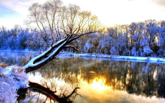 银装素裹的美丽雪景壁纸