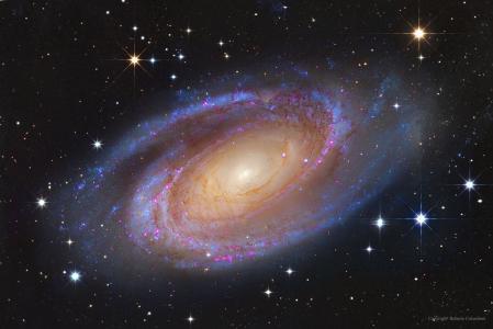 空间,天文学,星系,螺旋星系,宇宙,M81壁纸