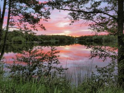 早晨的自然风光,湖泊,水中倒影,树、纳卡瑞典壁纸