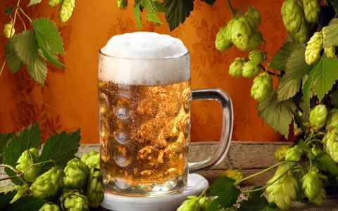 杯啤酒壁纸