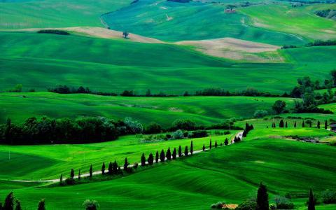 绿色山川高清美景壁纸