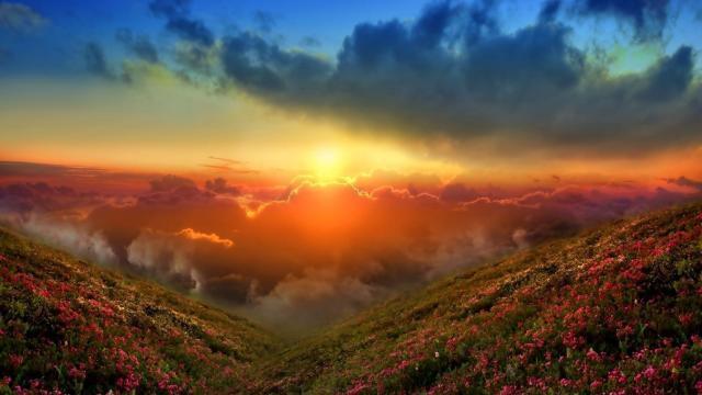 好看舒心的自然风景图片