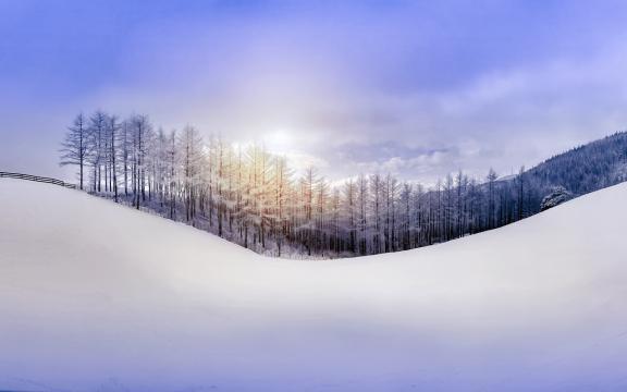 冰霜雪景高清壁纸