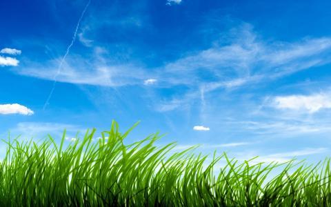 蓝蓝的天空绿草高清壁纸