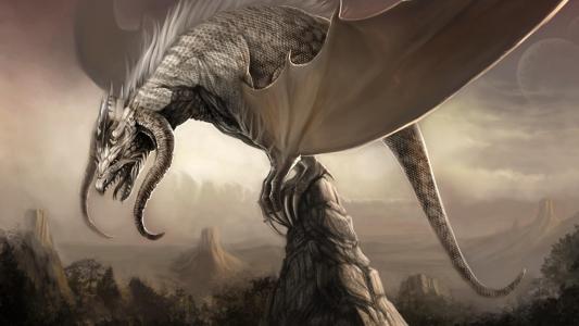 龙,山,翅膀