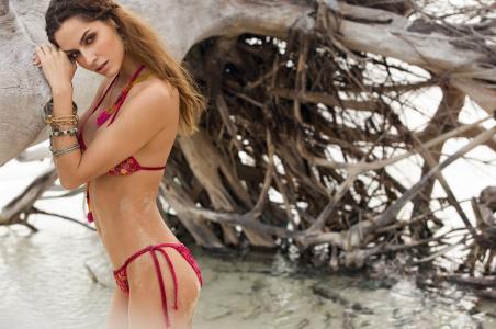 Ariadna Artiles,性感,身材,头发,脸,眼睛,看,腿,腰,泳装,沙,树,美女