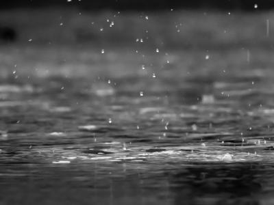 下雨,雨滴,水,湿,湖