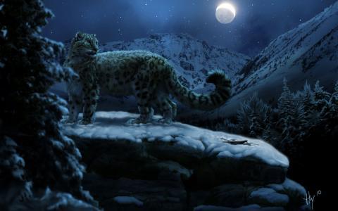 雪豹,月亮,冬天