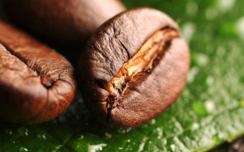咖啡,咖啡豆,谷物,宏