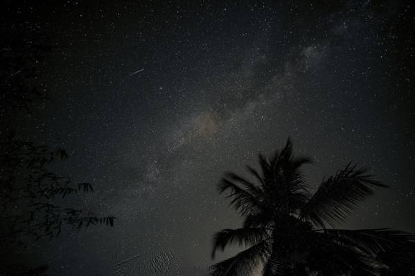 晚上,剪影,星星,银河系,空间,帕尔马,空间