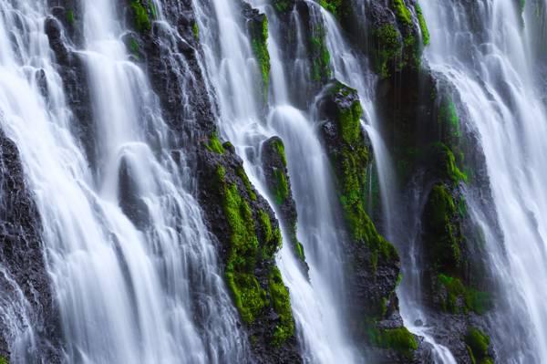 与藻类高清壁纸的瀑布的照片
