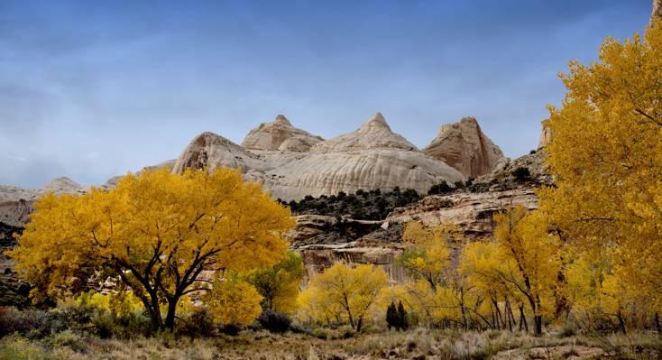 树木和秋季和白色的石头山顶,国会礁礁高清壁纸