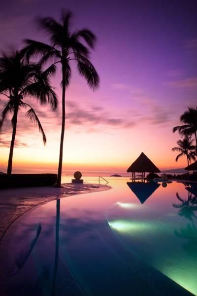 海和椰子树的剪影照片,墨西哥,波多黎各,韦拉斯,纳亚里特高清壁纸