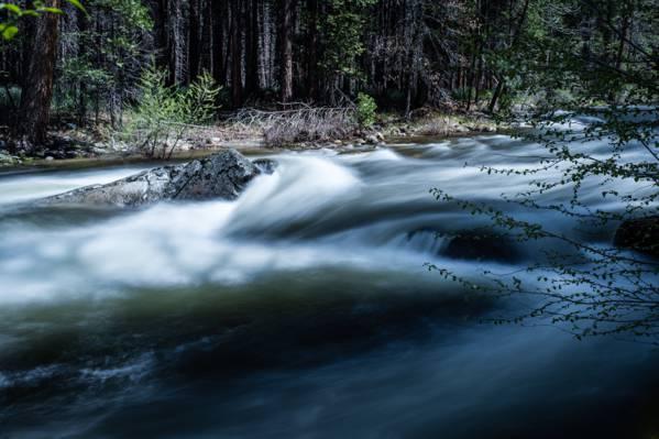 森林附近的河的照片高清壁纸