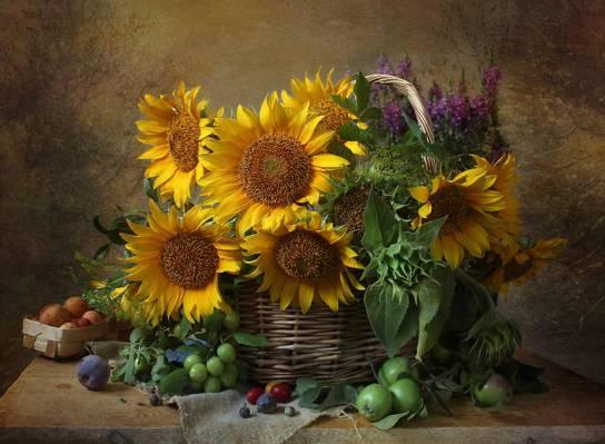 鲜花,流失,静物,苹果,向日葵