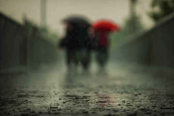 模糊摄影的人使用雨伞,而走在湿混凝土路径高清壁纸