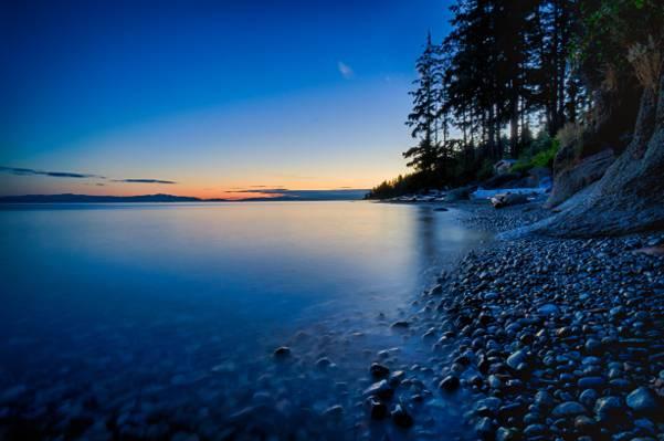 阳光海岸高清壁纸附近的树的风景摄影