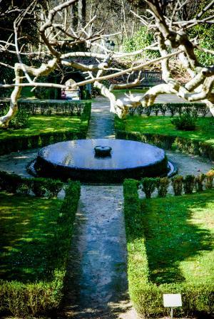 来源, 公园, 花园, 夏季, 水