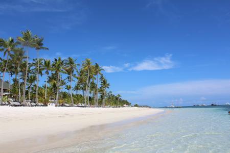 蓬塔卡纳, 棕榈树, 多米尼加共和国, 热带, 旅行, 蓝色, 海滩