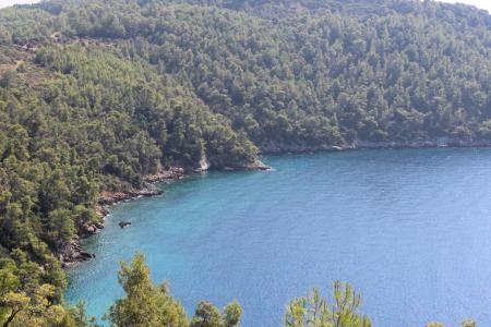 土耳其, muğla, akbuk, 自然, 森林, 海洋, 把它放在