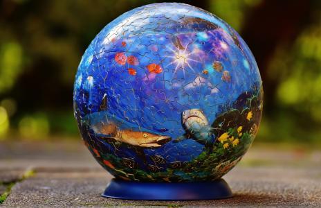 益智球, 海底世界, 鱼, 鲨鱼拼图, 戏剧, 棘手, 耐心游戏