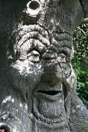 神仙树, 图像, 幻想, efteling, 动物